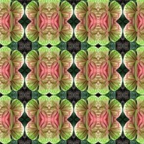 Flower Hawaii 2