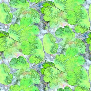 Lime columbine Leaves