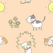 Rcats_150dpi_shop_thumb