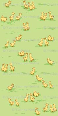 Little Baby Ducks on Green