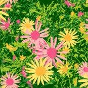 Rrrwild_daisy_001-07_shop_thumb