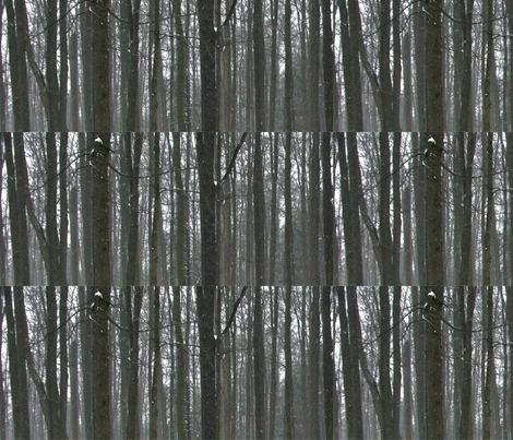 Forest3 fabric by simplydolling on Spoonflower - custom fabric