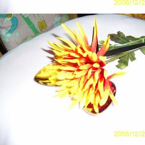PIC_0007