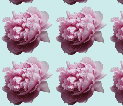 Rrpeony_cut_out_4_shop_preview