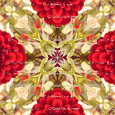 Picnik_collage_tint_darken_red_dalhia_
