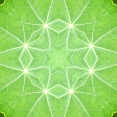 45_pinwheel_nas_leaves_45_Picnik_collage