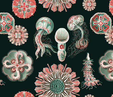 Jellies on black fabric by jellymania on Spoonflower - custom fabric