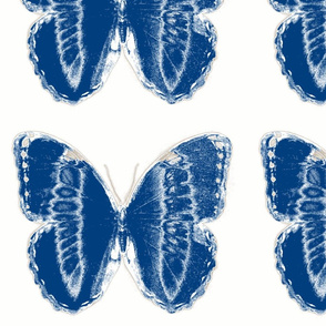 Vintage Printable Graphic Butterfly (Blue and white)