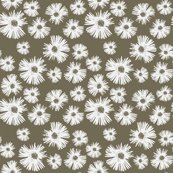 Rrdaisy_day_s_shop_thumb