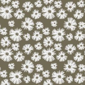 Paper Daisy - Coffee