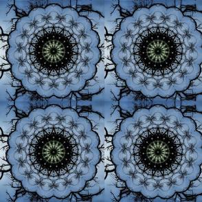 bluepatch