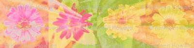 11 circle_splash_4_zinnias_row_Picnik_collage-ch-ch