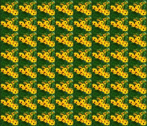 s_edit2_Crop_b_Black_eyed_Susan_sq_ex_c fabric by khowardquilts on Spoonflower - custom fabric