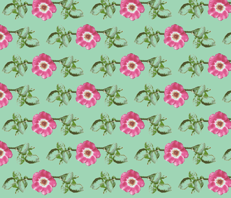 l_single_rose_leaves_Picnik_collage-ch fabric by khowardquilts on Spoonflower - custom fabric