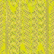 Rmagnetism_citrus_shop_thumb
