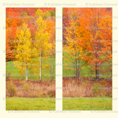 foliage_pair_Picnik_collage
