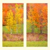 Rrfoliage_pair_picnik_collage_shop_thumb