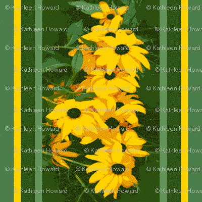 Black_Eyed_Susan_stripe_3_August_1_2009_012-ch