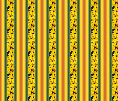 Rnarrow_stripe_picnik_collage_shop_preview