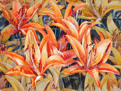 Lily Land