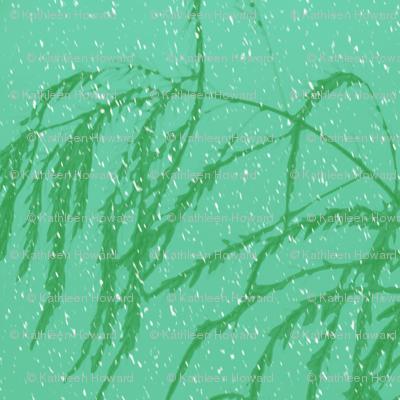 snow_post_aperagus_fern_003