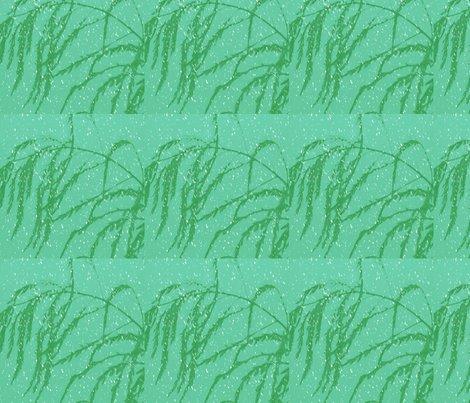 Rsnow_post_aperagus_fern_003_shop_preview