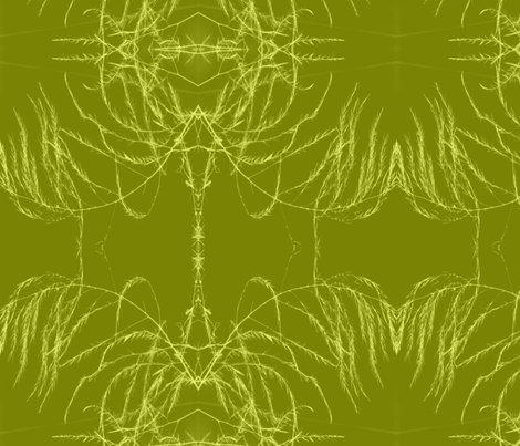 Rrrinvert_tint_aperagus_fern_003_shop_preview