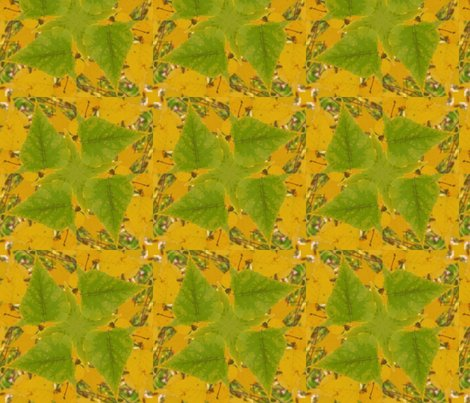 Rbirch_leaves_crop_2_post_picnik_collage_shop_preview