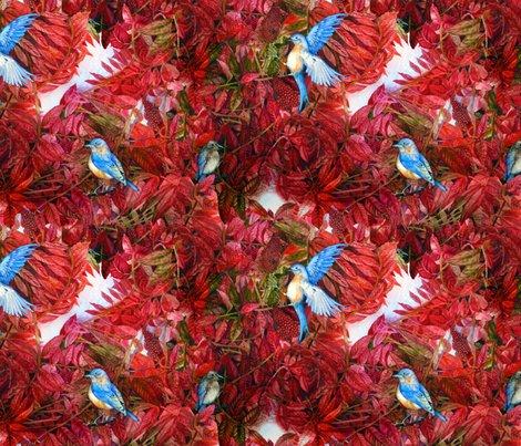 Rrbluebirdslovesumacfinallarge_ed_shop_preview