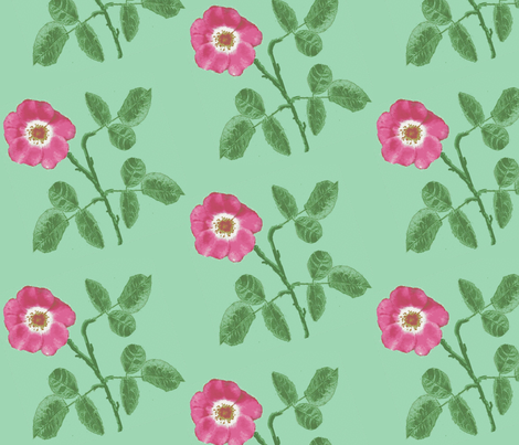 rose_3_leaves_Picnik_collage-ch-ch-ch-ed-ch-ed fabric by khowardquilts on Spoonflower - custom fabric