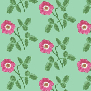 rose_3_leaves_Picnik_collage-ch-ch-ch-ed-ch-ed