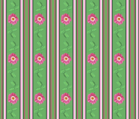 rose_and_leaves_stripes_3_12c Picnik_collage-ch-ch-ch-ch-ch fabric by khowardquilts on Spoonflower - custom fabric
