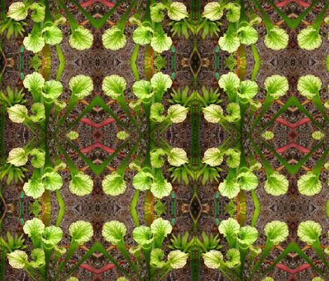 IMG_0590 fabric by gwyna on Spoonflower - custom fabric