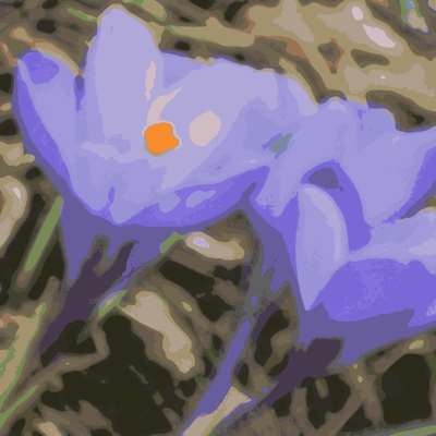 Copy_of_spring_flowers_2_004-ed-ed-ch