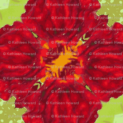 2x2_red_flower_45_Picnik_collage-ch