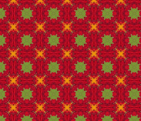 R2x2_qt_red_flower_45_picnik_collage_shop_preview