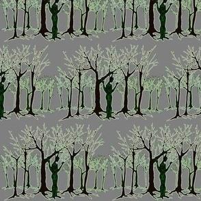 dryad's woods