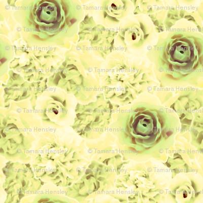 RomanticRoses-Leafy