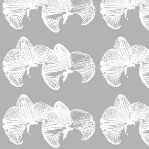 flowers_orchid_70_black_ink_single