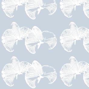 flowers_orchid_blue_haze_ink_single