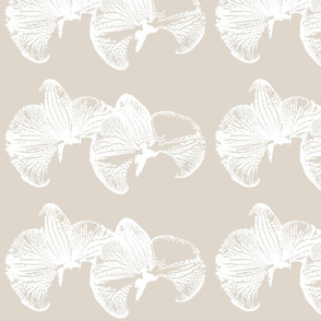 flowers_orchid_canvas_ink_single