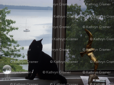black cat & brass gull