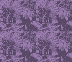 Rtone-on-tone_purple_asters_9_24_07_005_ch_comment_37603_preview