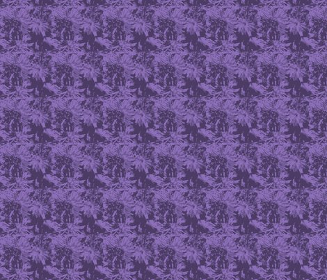 Rtone-on-tone_purple_asters_9_24_07_005_ch_shop_preview