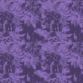basic tone-on-tone_purple_asters_9_24_07_005-ch-ed