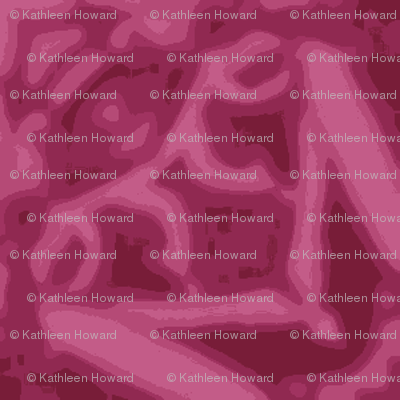 crop_c_rose_aster_Picnik_collage-ch