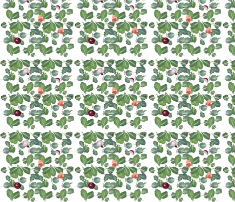 Scattered Collard Greens-126 fabric by kkitwana on Spoonflower - custom fabric