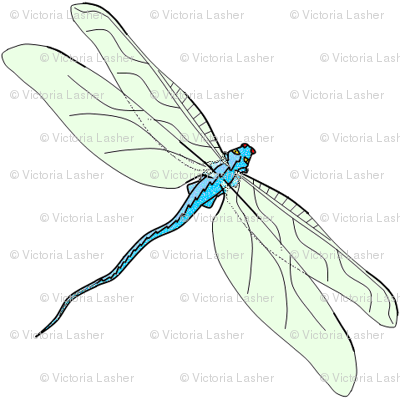 vll_dragon_fly_1