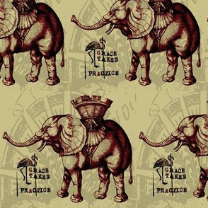 Elephantine Grace