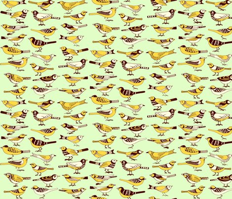 R8x9_brown-yellow_on_blue_birds_shop_preview